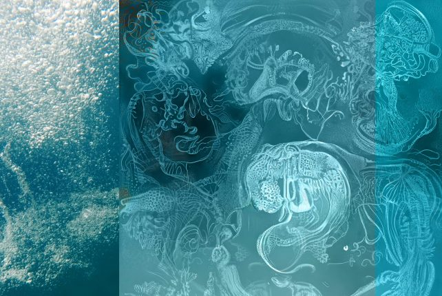 ANNOUNCING OUR NEW PRODUCTION: SUBAQUATIC SONGS_AQUAFORMATIONS